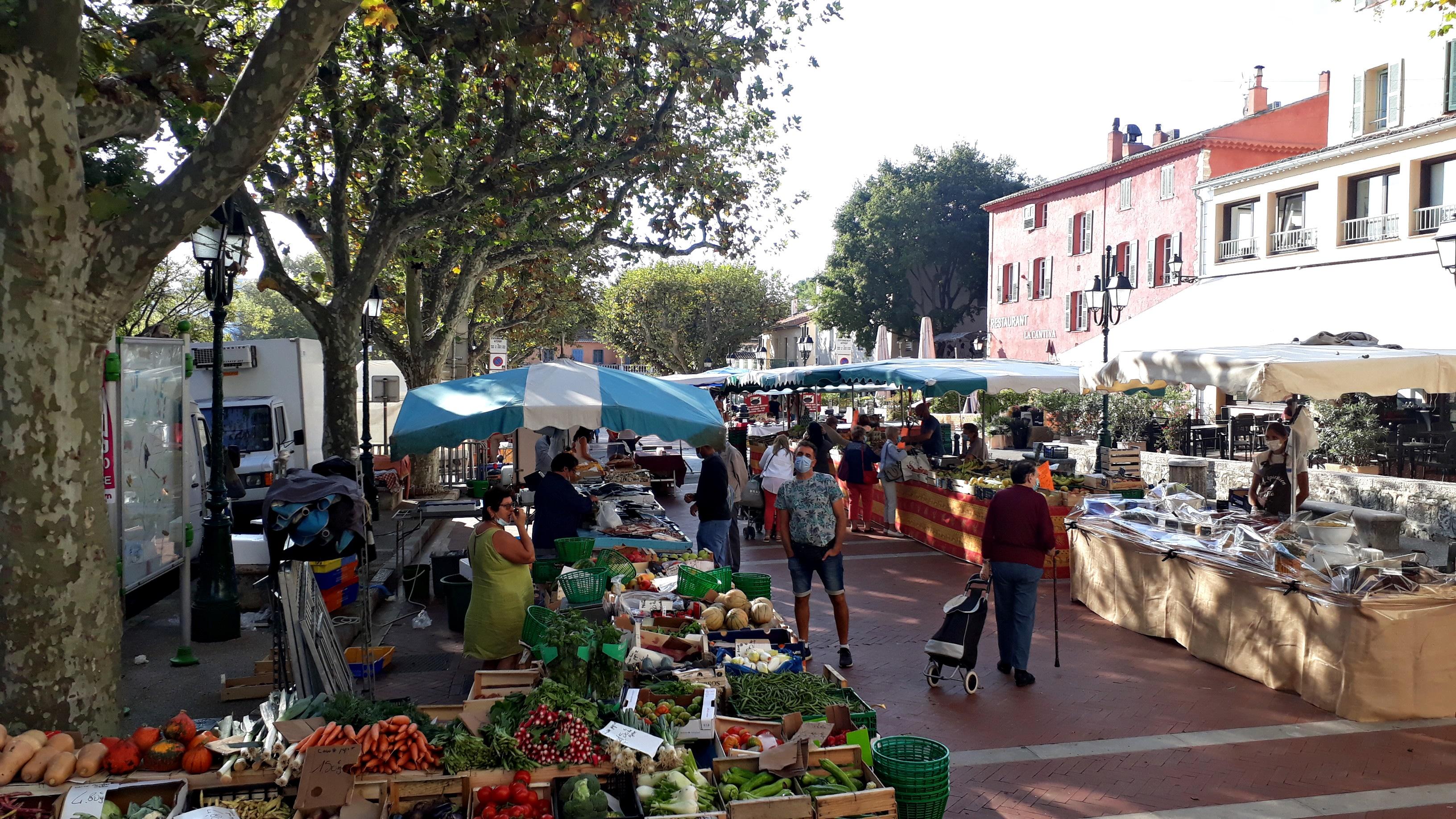 Mouans-Sartoux: le contre-modèle de la Côte d'Azur